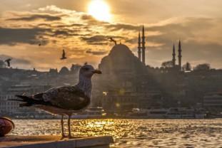Istanbul od 399 €